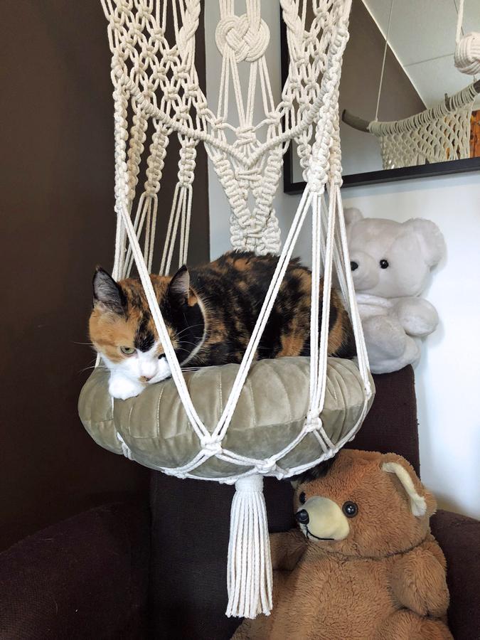 Makramee-kissanpeti